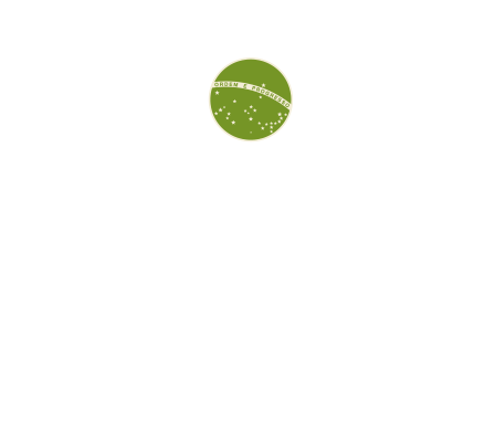 Braziliaanse samba workshops met danseressen